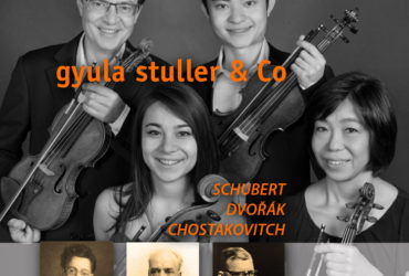 Gyula Stuller & Co